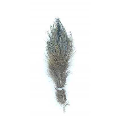 Ringneck rump hackle bleached- Flyco