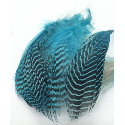 Teal flank feather - Flyco