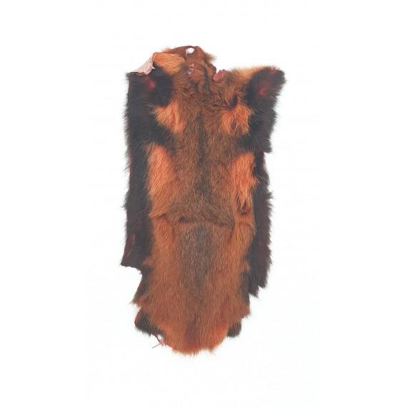 Savannah rat - A.Jensen