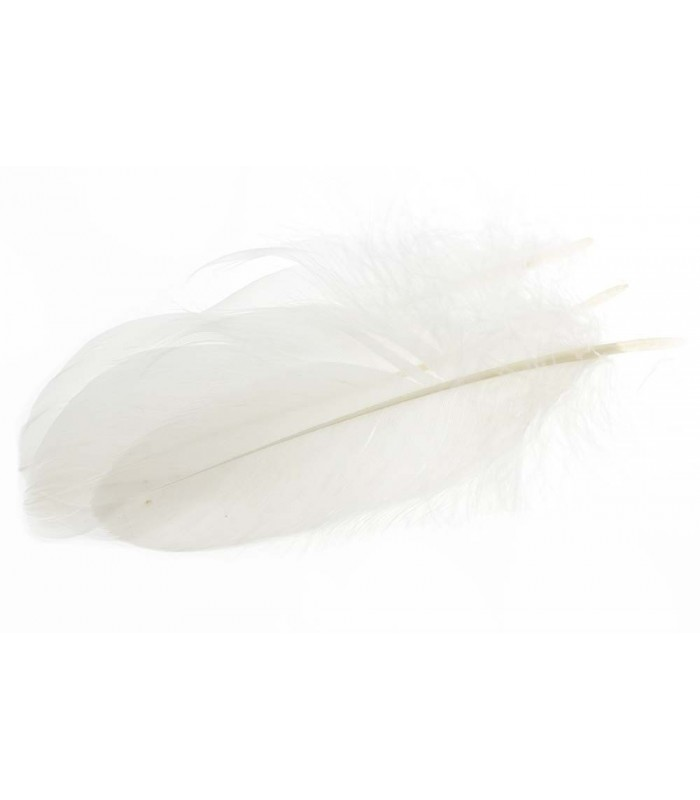 Goose shoulder