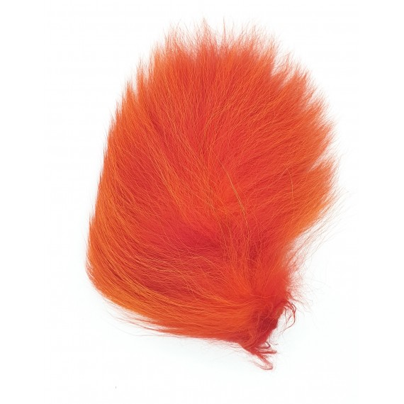 Horn's Raccoon tail