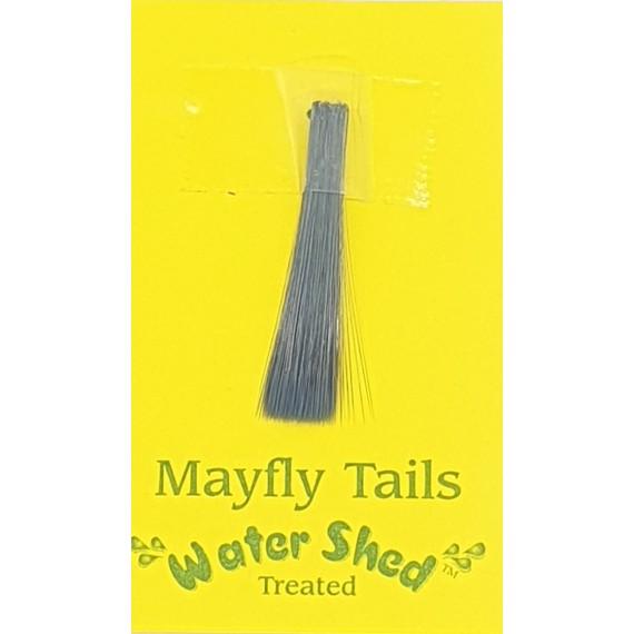 Mayfly tails - Wapsi